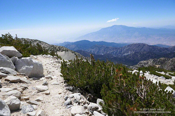 San Jacinto Peak (10839') from the Sky High Trail on the south side of San Gorgonio Mountain.