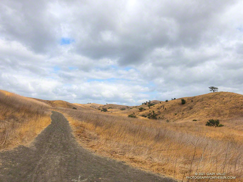 East Las Virgenes Canyon Trail in Upper Las Virgenes Canyon Open Space Preserve