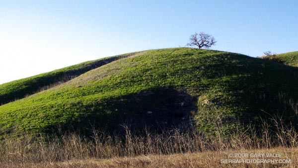 Greening hill at Ahmanson Ranch -- now Upper Las Virgenes Canyon Open Space Preserve.