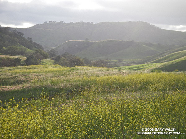 Upper Las Virgenes Canyon Open Space Preserve.