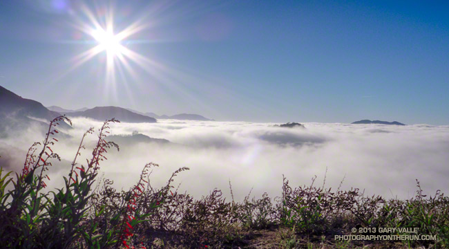 Marine Layer from Angeles Crest Highway