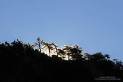 Morning sun crests a ridge on Waterman Mountain.