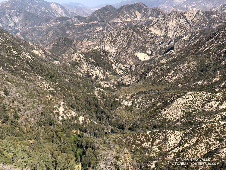 Bear Canyon from the upper Bear Canyon Trail.