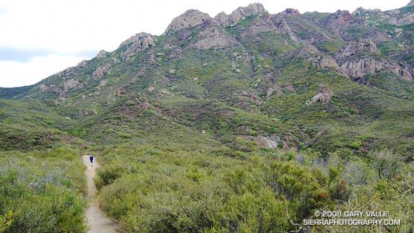 Old Boney Trail in the Boney Mountain Wilderness