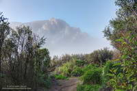 Boney Mountain's Western Ridge from the Old Boney Trail