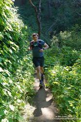 Brett running through thimbleberry on a lush section of the Razorback Ridge Trail