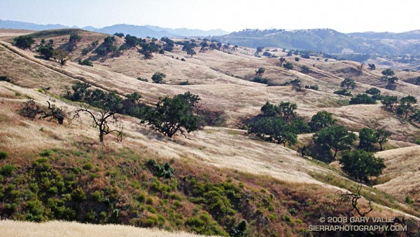 Sun burnished hills along Lasky Mesa in Upper Las Virgenes Canyon Open Space Preserve.