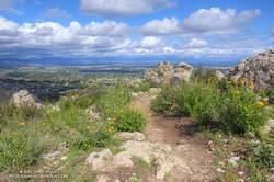 Trail leading to Castle Peak