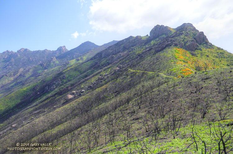 The Chamberlain segment of the Backbone Trail in Pt. Mugu State Park.