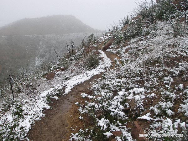 Snow on the Chumash Trail, March 2006.