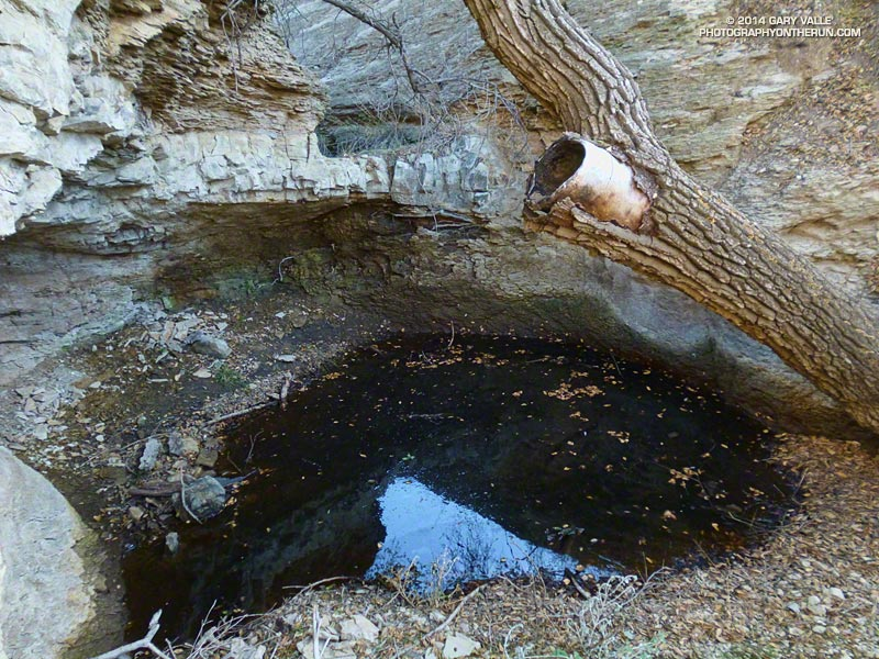 A natural cistern in the drainage of East Las Virgenes Creek. March 18, 2014.