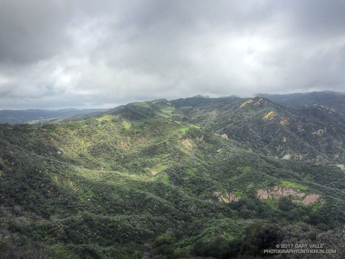 View of upper Santa Ynez Canyon and the Eagle Rock area of Topanga State Park from East Topanga Fire Road.