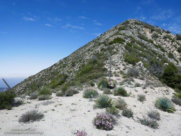 East Ridge of Condor Peak
