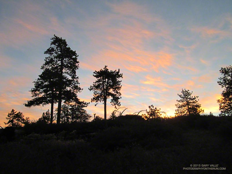 Dawn on the Gray's Peak trail about 20 minutes into the 2015 Kodiak 50 Mile at Big Bear Lake.