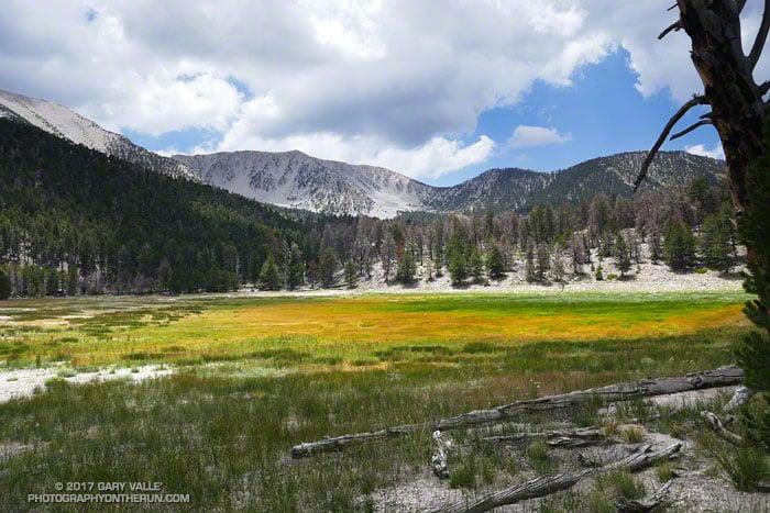 Dry Lake in the San Gorgonio Wilderness