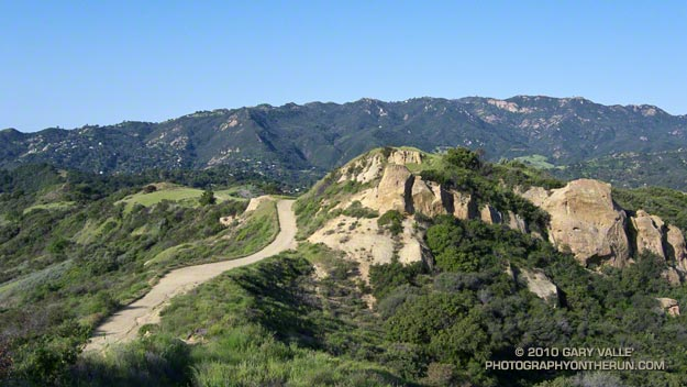Eagle Springs Fire Road, between the Hub and Trippet Ranch, in Topanga State Park