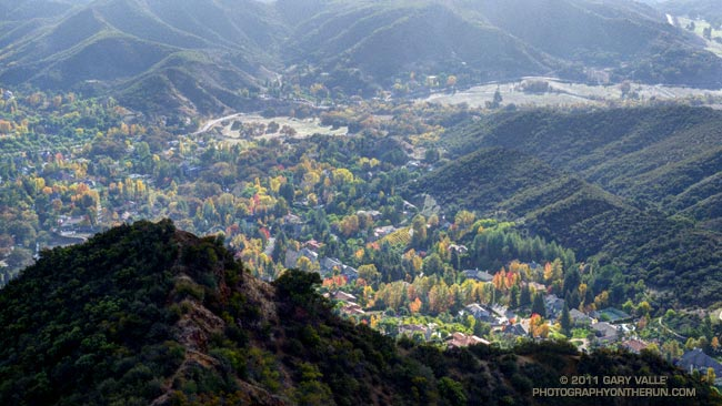Autumn color in the Medea Creek area of Agoura Hills
