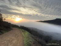 Marine layer fog flowing between Rustic Canyon and Garapito Canyon