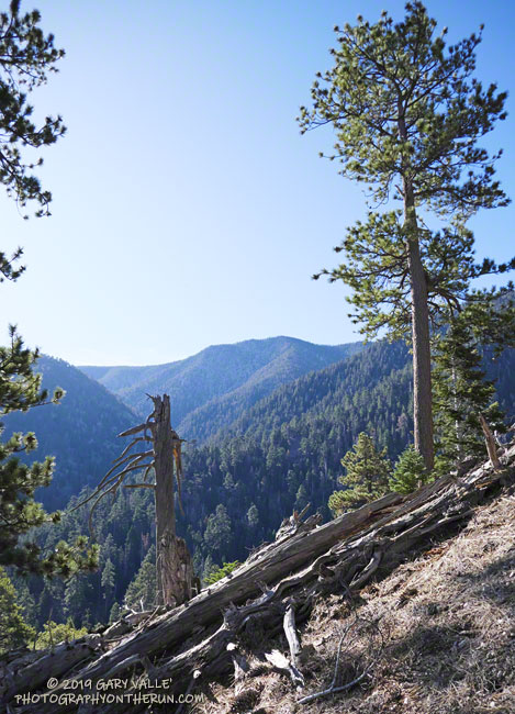 East San Bernardino Peak from the John's Meadow Trail. During the last ice age a glacier flowed down the canyon below the peak.