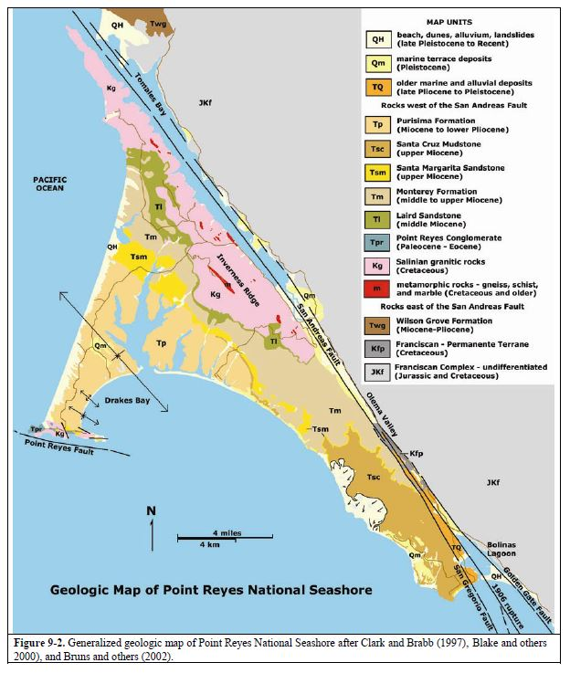 The geology of Point Reyes Peninsula differs dramatically from Franciscan Complex rocks on the east side of the San Andreas Fault Zone. This map is from