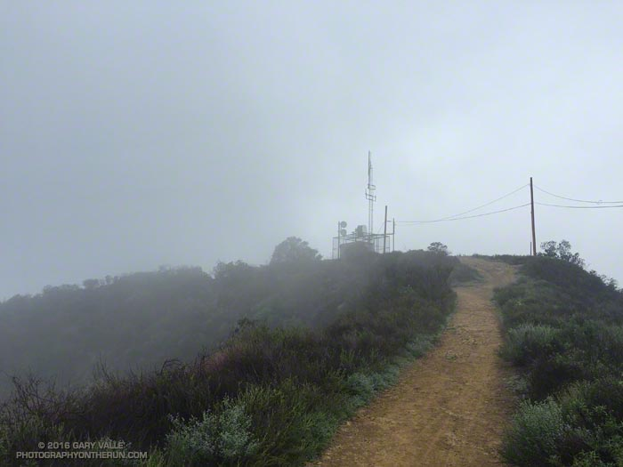 Cloud-shrouded Green Peak on Temescal Ridge Trail fire road. The elevation of the peak is about 1916'.