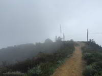 Cloud-shrouded Green Peak on Temescal Ridge Trail fire road.