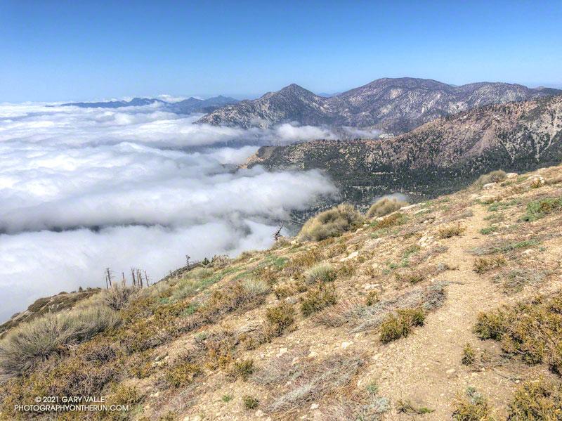 Twin Peaks and Mt. Waterman from the Hawkins Ridge Trail on South Mt. Hawkins