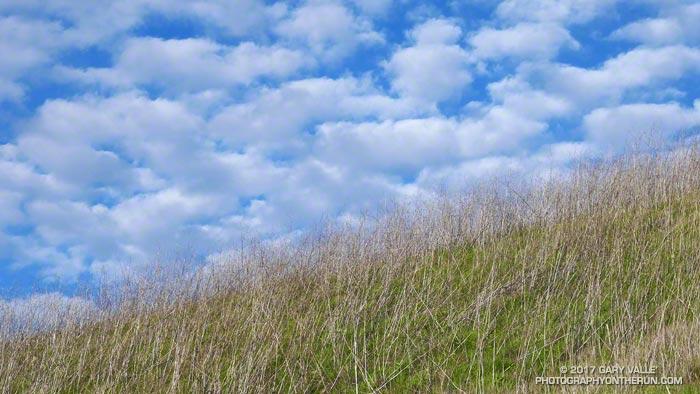 Hillside and clouds along the Cheeseboro Ridge Trail.