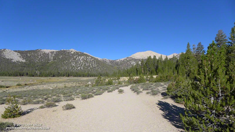 Looking toward Cottonwood Pass (center) from the margin of Horseshoe Meadow, less than a mile into the run. Elevation here is about 9,925'.