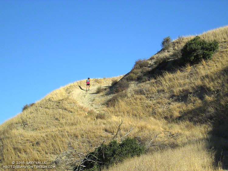 Runner ascending Hot Dog Hill during the 2018 Rocky Peak 50K.