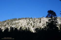 Morning light on Islip Ridge from low on the Windy Gap Trail in Crystal Lake basin