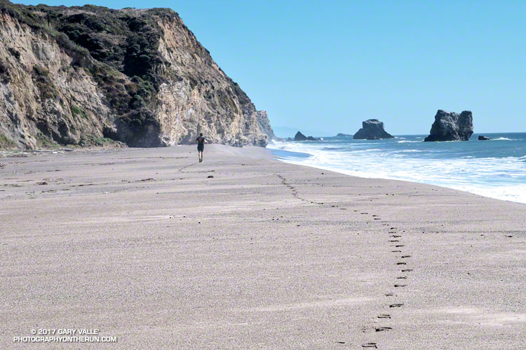 Running on Kelham Beach, Point Reyes National Seashore