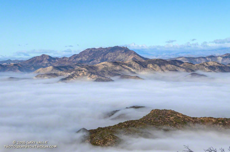 Ladyface, a peak in Agoura Hills, stands above a sea of fog filling the low areas of Malibu Creek State Park.
