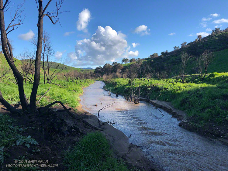 Upper Las Virgenes Creek on March 7, 2019, following the Woolsey Fire and frequent Winter rain.