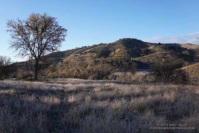 Upper Las Virgenes Canyon Winter Morning