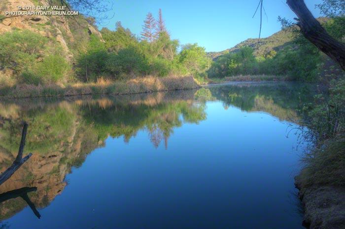 Century Lake, Malibu Creek State Park. March 26, 2016.