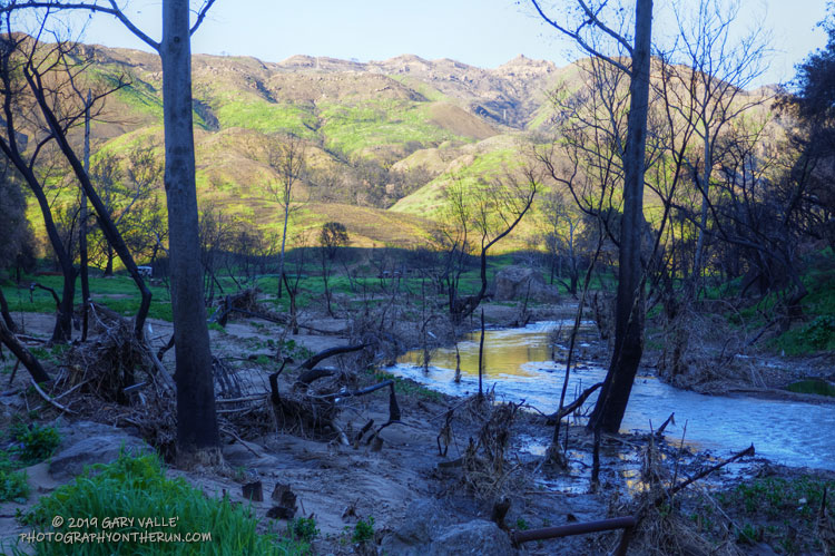 Malibu Creek State Park following the Woolsey Fire and heavy Winter rains.