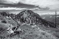 Middle Hawkins from the Pacific Crest Trail. Photography by Gary Valle.