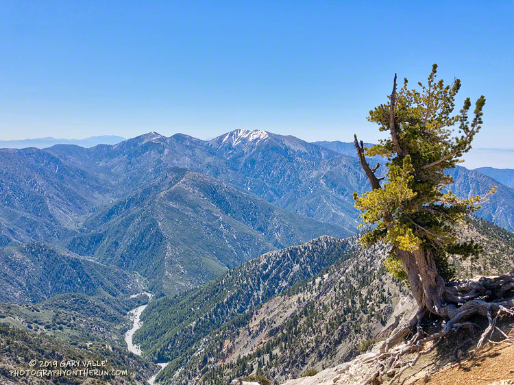 Mine Gulch and Mt. Baldy from Mt. Baden-Powell on June 8, 2019.