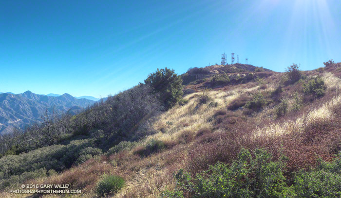 The summit of Mt. Lukens from near the top of the Stone Canyon Trail.