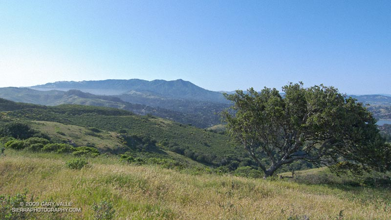 View north to Mt. Tamalpais from near Bobcat-Miwok-Marincello trails junction in the Marin Headlands.