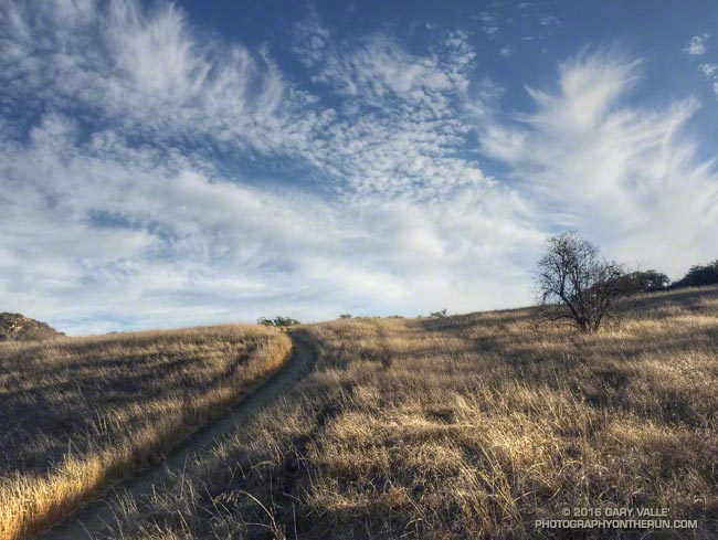 Long shadows and feathery clouds on the Musch Meadow Trail in Topanga State Park