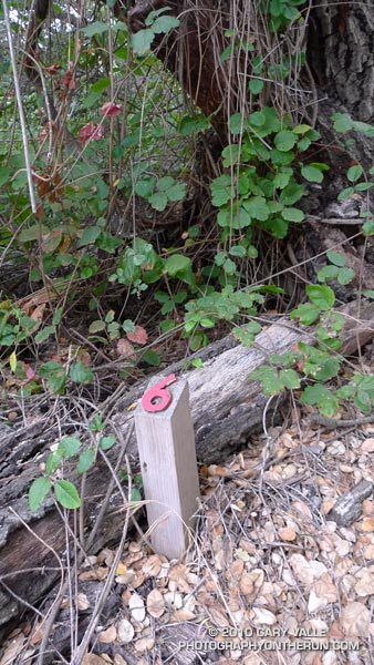 One of the nature trail markers on the route used for the Backbone Trail. This one looks like it marks some poison oak.