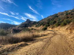 A quarter-mile from the top of Bulldog Mtwy fire road in Malibu Creek State Park.