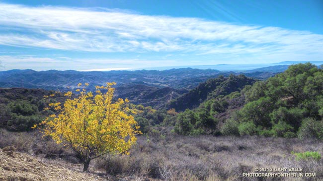 View to the ocean from Sulfur Mountain Road Recreation Trail