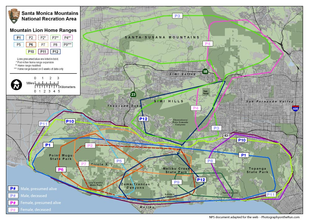 Map of home ranges of the mountain lions P1 to P12 in the Santa Monica Mountains, Simi Hills and Santa Susana Mountains. Adapted from a NPS document produced in 2009. See article text for a link to the original document.