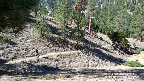 Dave Burke cruising down a nice section of the PCT between Cloudburst Summit and Cooper Canyon.