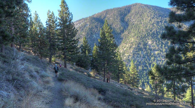 Looking across Vincent Gap to the slopes of Mt. Baden-Powell