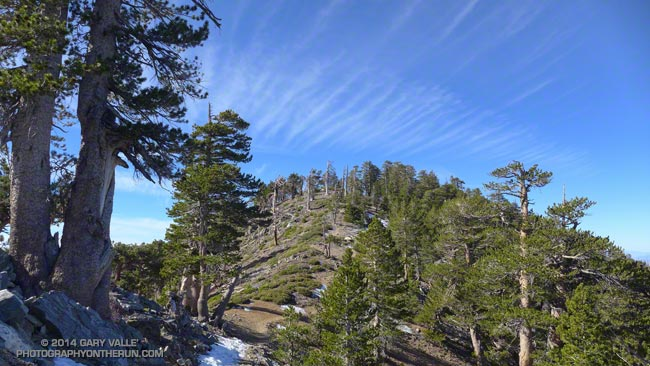 Mt. Burnham from the PCT in the San Gabriel Mountains, near Los Angeles