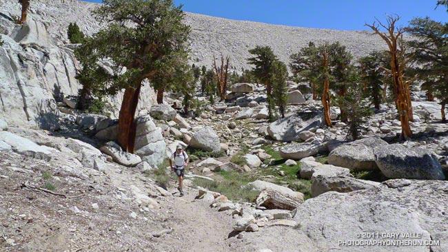 Craig Kinard running on the PCT near Cirque Peak